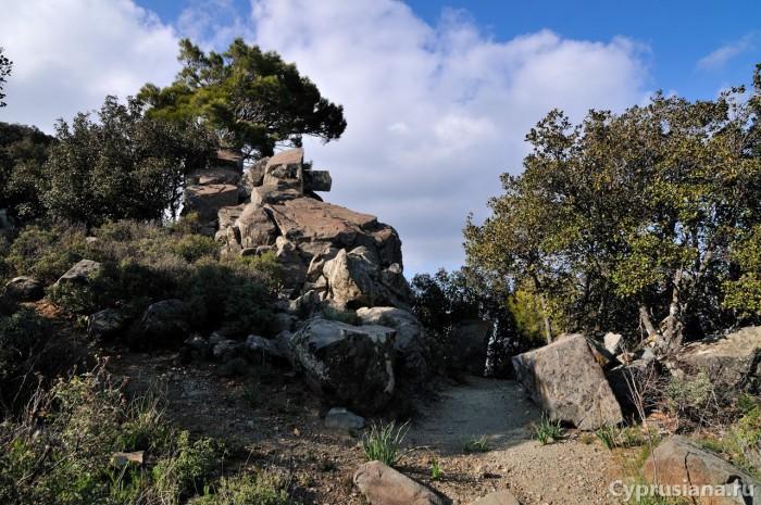Камни на тропе