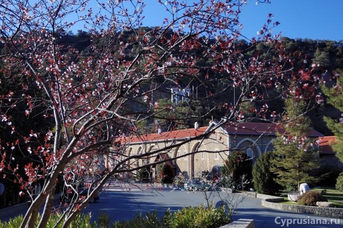 Монастырь Киккос в марте