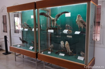 В музее