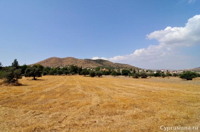 Сельское хозяйство района