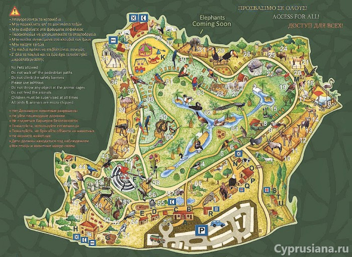 Карта зоопарка Пафоса